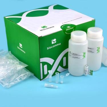 大包装质粒提取试剂盒