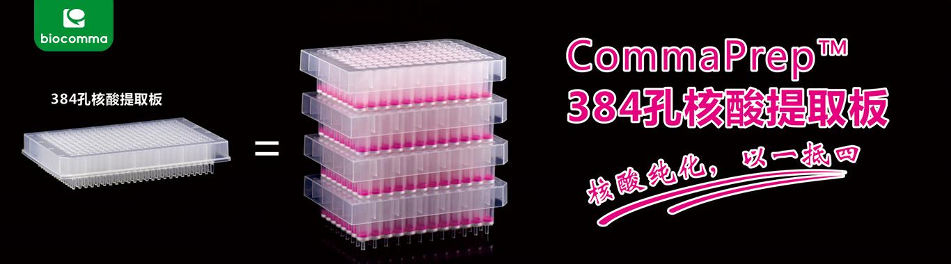 384孔核酸提取板